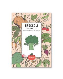 Broccolifrø