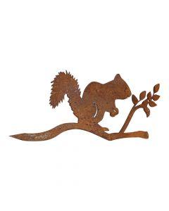 Rusten egern på gren