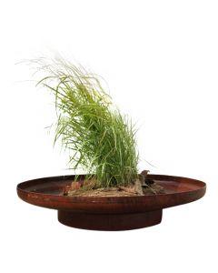 plantekumme-rundt